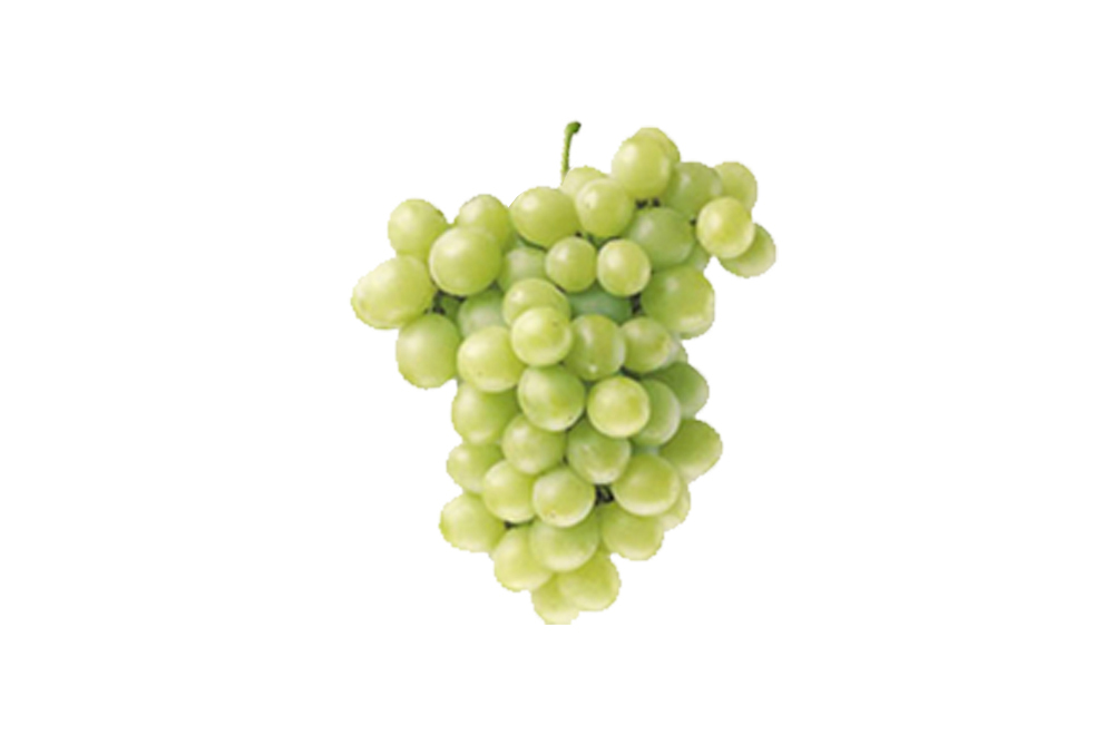 Agrofesa table grapes perlette for Table grapes